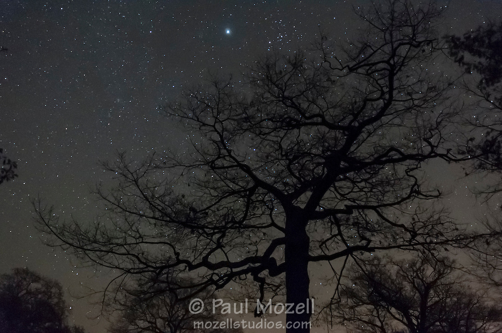 The night time sky above a cemetery in Gloucester, MA.