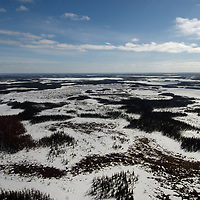 North of the Arctic Circle in Russia, reach their northernmost intersection with the tundra.  These spruce and birch trees are only able to grow so far north because of warming influences of the gulf stream current in the Arctic Ocean.