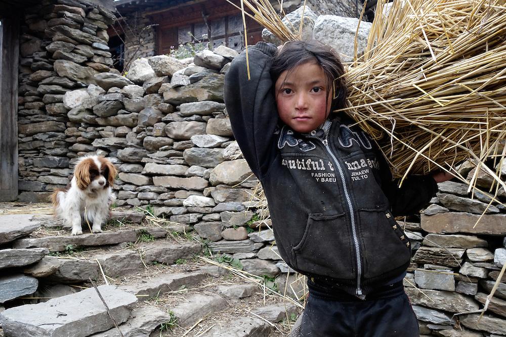 Girl carrying straw in the village of Ngakyu Leru, Nepal