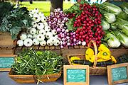 Hamilton Farmers Market, Montana.