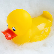 A bright yellow rubber ducky floating in the bubbles of a bubble bath.