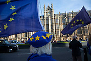 Anti Brexit pro Europe demonstrators protest waving European Union and Union Jack flags and placards in Westminster opposite Downing Street on the day the Prime Minister takes her draft Brexit deal to gain backing from her cabinet in Westminster on 14th November 2018 in London, England, United Kingdom.