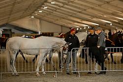 Aillaud Benjamin, Chardon Bram, Weber Chester, <br /> Jumping Mechelen 2017<br /> © Sharon Vandeput<br /> 29/12/17