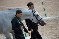 Gaudiano Emanuele, ITA, Caspar<br /> Olympic Games Rio 2016<br /> © Hippo Foto - Dirk Caremans<br /> 12/08/16