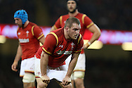 Gethin Jenkins of Wales looks on.Under Armour 2016 series international rugby, Wales v Argentina at the Principality Stadium in Cardiff , South Wales on Saturday 12th November 2016. pic by Andrew Orchard, Andrew Orchard sports photography