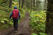 Hiker on Lost Lake Trail, Chugach National Forest, Alaska