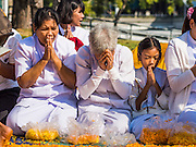 "02 JANUARY 2015 - KHLONG LUANG, PATHUM THANI, THAILAND: People pray at Wat Phra Dhammakaya on the first day of the 4th annual Dhammachai Dhutanaga (a dhutanga is a ""wandering"" and translated as pilgrimage). More than 1,100 monks are participating in a 450 kilometer (280 miles) long pilgrimage, which is going through six provinces in central Thailand. The purpose of the pilgrimage is to pay homage to the Buddha, preserve Buddhist culture, welcome the new year, and ""develop virtuous Buddhist youth leaders."" Wat Phra Dhammakaya is the largest Buddhist temple in Thailand and the center of the Dhammakaya movement, a Buddhist sect founded in the 1970s.   PHOTO BY JACK KURTZ"