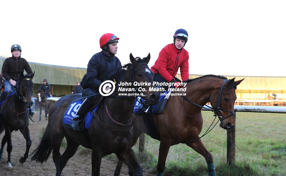 04-12-12. Launch of Steller Leopardstown Christmas Festival and Media Morning at Noel Meade, Tu Va Racing Stables, Castletown, Navan.<br /> Honourable Emperor and Pandorama.<br /> Photo: John Quirke / www.quirke.ie<br /> ©John Quirke Photography, Unit 17, Blackcastle Shopping Cte. Navan. Co. Meath. 046-9079044 / 087-257945.