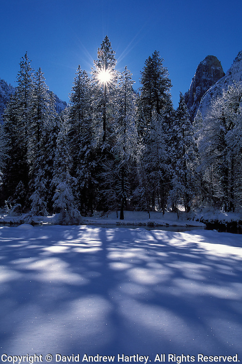 Winter Starburst, Yosemite National Park, California