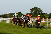 The Detainee ridden by David Egan and trained by N P Mulholland, Norab ridden by Joshua Bryan and trained by B J Llewellyn, Nacho Falls ridden by Rossa Ryan and trained by N J Hawke, Percy Alexander ridden by S M Levey and trained by C J Mann, Dovils Date ridden by David Probert and trained by Tim Vaughn, Malangen ridden by  and trained D Pipe, Hidden Depths ridden by L P Keniry and trained by N P Mulholland, Percy's Prince ridden by Rob Hornby and trained by Mrs A J Perrett, Sinndarella ridden by F Norton and trained by Mrs I Gansera-leveque, Flying Focus ridden by K T O'Neill and trained by M F Harris, Earthly ridden by Joey Haynes and trained by B J Llewellyn and Danglydontask ridden by Thore Hammer Hansen and trained by M Murphy race in the Signs Express Handicap (Class 6) (4YO plus) - Mandatory by-line: Robbie Stephenson/JMP - 25/06/2020 - HORSE RACING - Bath Racecoure - Bath, England - Bath Races 25/06/20