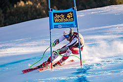 29.12.2018, Stelvio, Bormio, ITA, FIS Weltcup Ski Alpin, SuperG, Herren, im Bild Niklas Koeck (AUT) // Niklas Koeck of Austria in action during his run in the men's Super-G of FIS ski alpine world cup at the Stelvio in Bormio, Italy on 2018/12/29. EXPA Pictures © 2019, PhotoCredit: EXPA/ Johann Groder