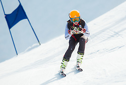 JAN Nina  of Slovenia during Women's Super Combined Slovenian National Championship 2014, on April 1, 2014 in Krvavec, Slovenia. Photo by Vid Ponikvar / Sportida