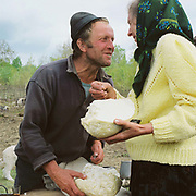 A shepherd gives a villager her share of the cheese at the Measurement of the Milk festival, Ieud, Maramures, Romania. The Measurement of the Milk festivals take place at the beginning of May, when the shepherds bring the flocks, which have spend a few days grazing in the hills, to meet the villagers at a clearing where the measurement will take place.  The sheep are milked by their owners, and the yield of each family's animals measured to determine the quota of cheese that they will receive during that season.