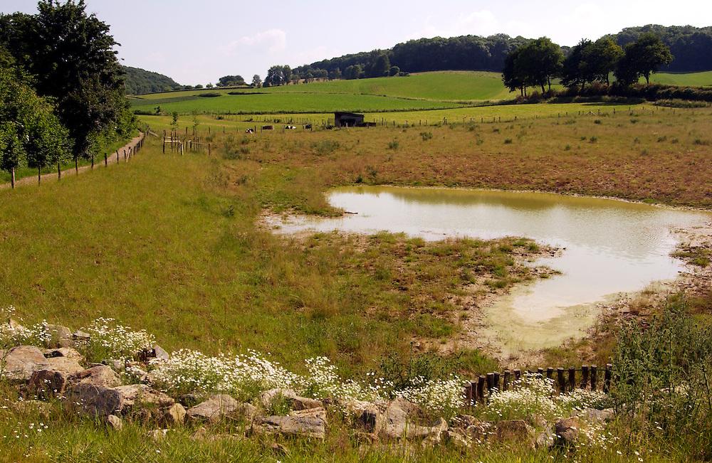 Nederland, Zuid Limburg, omgev. Valkenburg-Schin op Geul, 7 juni 2003<br /><br />Gerendal. Mooie valei in limburgs landschap. Spaarbekken voor regenwater en bezinking van geerodeerd materiaal. erosie bestrijding.<br /><br /><br />Foto (c) Michiel Wijnbergh/Hollandse Hoogte