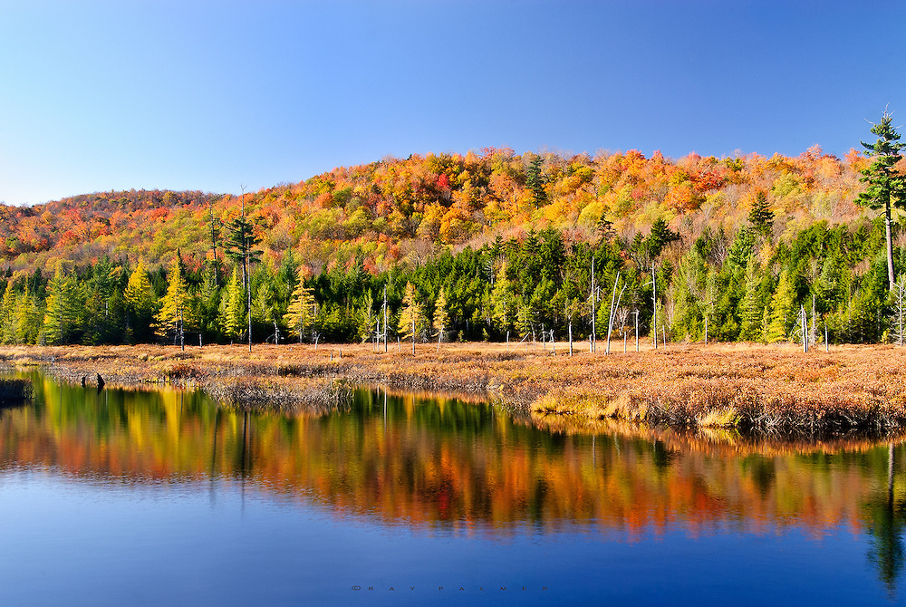 This autumn afternoon in the Moose River Plains Wild Forest was just glowing with color. Scenes without clouds are often boring, but when the light angle got right, the blue expanse overhead added a nice counterpoint to the pallette on the surrounding Adirondack hills.