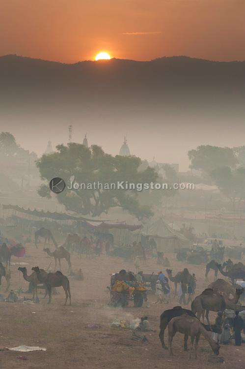 Sunrise at the Pushkar mela grounds, Pushkar, Rajasthan, India.