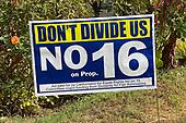 News-Election 2020-Oct 8, 2020