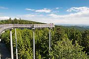 Baumwipfelpfad Waldwipfelweg, Fichtenwald, Maibrunn, Vorderer Bayerischer Wald, Bayern, Deutschland | tree top path in Maibrunn, Bavarian Forest, Bavaria, Germany