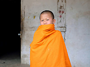 Portrait of a young Buddhist monk wearing an orange robe at the temple in the Doi ethnic minority village of Ban Muang, Luang Namtha, Lao PDR. Ban Muang is the only Doi village in Lao PDR, the majority of Doi people live in Myanmar.