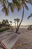 Hammock at sunrise at The Reach Resort in Key West, Florida, USA