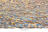 20x30 poster print of rippling water and reflection of sunrise.