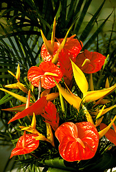 Hawaii: Floral arragement with tropical flowers.  Photo:hiadve109.Photo copyright Lee Foster, 510/549-2202, lee@fostertravel.com, www.fostertravel.com