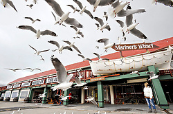 CAPE TOWN, 2014/05/02, RESTUARANT REVIEW Mariner's Wharf. Picture: Adrian de Kock/African News Agency(ANA)