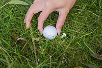 UTRECHT - regels  voor NGF. ligging  van de bal.  identificeren bal. COPYRIGHT KOEN SUYK