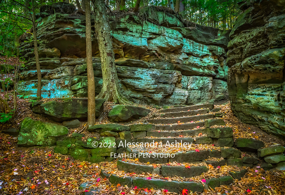 Cuyahoga Valley National Park's Ritchie Ledges form massive rock walls draped in mosses and ferns, crowned by eastern hemlocks.  In autumn, fallen red leaves enhance the beauty.