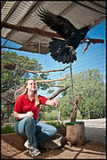 Kelly and Common Raven