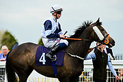 Retical Angel ridden by David Probert and trained by Clive Cox in the Value Rater Racing Club Is Free Handicap race.  - Mandatory by-line: Ryan Hiscott/JMP - 01/05/2019 - HORSE RACING - Bath Racecourse - Bath, England - Wednesday 1 May 2019 Race Meeting