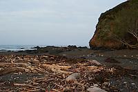 Driftwood near Pico Creek, San Simeon, Central California Coast. Image taken with a Nikon D3s and 50 mm f/1.4G lens (ISO 800, 50 mm, f/10, 1/400 sec).