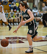 Elyria Catholic vs. St. Martin dePorres girls varsity basketball on February 24, 2011.