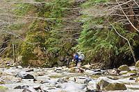 Hiker crosses the cold Big Sur River on Pine Ridge Trail, Big Sur, California.
