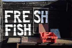 Fresh fish sign, Hastings, East Sussex UK Oct 2016