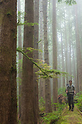 Zach Podell-Eberhardt walks on a log through a grove of large trees along the West Coast Trail, British Columbia, Canada.