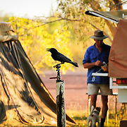 Dunmara Roadhouse and Campsite, The Stuart Highway, Northern Territory, Australia, Oceania