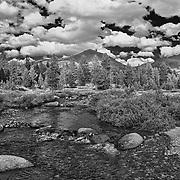 Upper Tuolumne Meadows Stream - Yosemite - HDR - Infrared Black & White