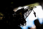 PARADISE, CA - NOVEMBER 08: The Key Phoenix statue, created by local artist Jessie Mercer, is seen at the new Building Resiliency Center, during events for the one year anniversary of the Camp Fire, on November 8, 2019 in Paradise, California. It has been one year since the Camp Fire, caused by PG&E transmission lines, tore through the town of Paradise, California, killing 85 people and destroying more than 18,000 homes and businesses, becoming the deadliest and most destructive fire in the history of California. (Photo by Philip Pacheco/Getty Images)