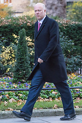 Downing Street, London, November 29th 2016. Transport Secretary Chris Grayling arrives at 10 Downing Street for the weekly meeting of the UK cabinet.