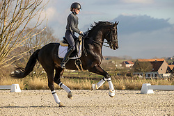 De Winne Flore, BEL, Flynn<br /> Winhorses - Geraardsbergen 2021<br /> © Hippo Foto - Dirk Caremans<br /> 25/01/2021