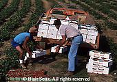Farms & Agriculture
