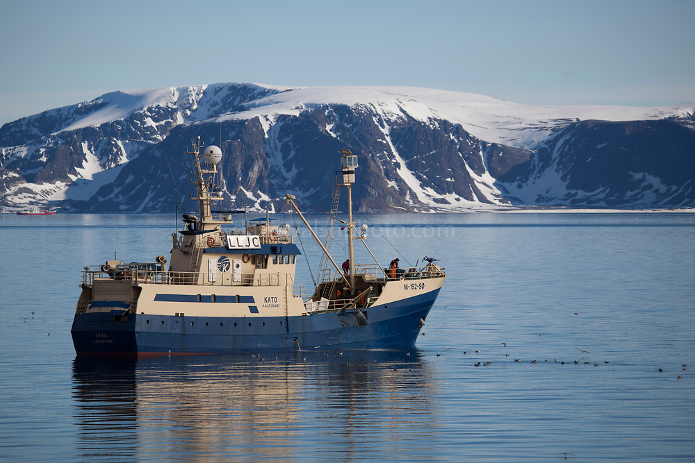 The Kato, Norwegian Whaling ship and fishing vessel after catching a minke whale off the coast of Svalbard. Whale hunting is banned by the International Whaling Comission, but Norway, which is a member, registered an objection to the ban, and continues to hunt. In 2010, when this photograph was made, Norway hunted 468 minke whales. In 2017, Norway plans to hunt 999 whales, which has caused international outcry.
