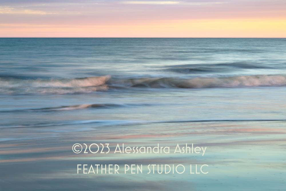 Long exposure pan blur, sunset, coastal South Carolina.