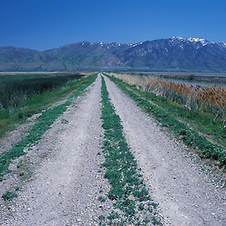 Brigham City, UT. A dike road at the Bear River Migratory Bird Refuge on Utah's Great Salt Lake.  Wasatch Range is in the distance.
