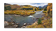 Autumn foliage in the Gunnison Range of Colorado along the Crystal River, Colorado, USA