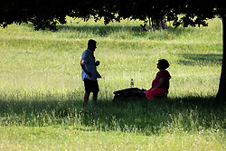 Licensed to London News Pictures. 16/06/2021. London, UK. Walkers rest in the shade in Richmond Park, southwest London as weather forecasters predict a 30c scorcher today before storms hit the UK tonight. The Met Office have issued a four day yellow weather warning for thunderstorms and heavy rain for London and the South East with the possibility of lightening strikes and flooding of properties putting an abrupt end to the hot weather. Photo credit: Alex Lentati/LNP