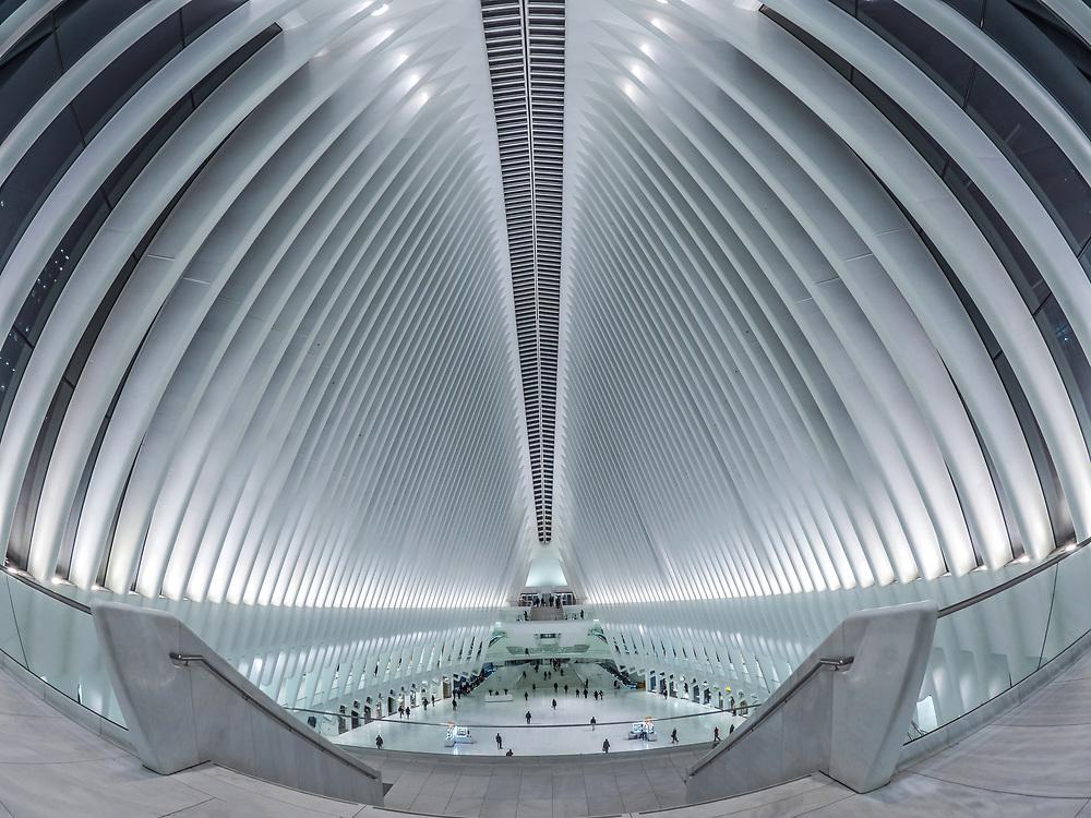Oculus, World Trade Center, NYC