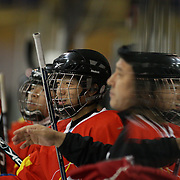 The Chinese bench during the China V New Zealand match during the 2012 IIHF Ice Hockey World Championships Division 3 held at Dunedin Ice Stadium. Dunedin, Otago, New Zealand. 21st January 2012. Photo Tim Clayton