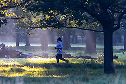 Licensed to London News Pictures. 22/09/2021. Surrey, UK. Walkers enjoy a misty sunrise on the first day of Autumn in Richmond Park, south-west London today as weather forecasters predict warm autumnal weather for the next 7 days with highs of 24c. Photo credit: Alex Lentati/LNP